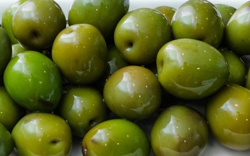 Degustación de Aceitunas